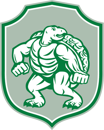 stance: Illustration of a green turtle in fighting stance looking to the side set inside shield crest on isolated background done in retro style.