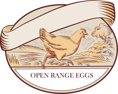 free range: Drawing sketch style illustration of a hen running viewed from the side with farm trees in the background and Open Range Eggs label set inside oval shape. Illustration
