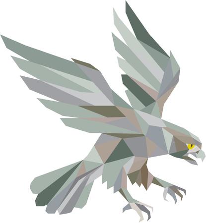 Lage veelhoek stijl illustratie in grijs van een slechtvalk havik arend bird swooping