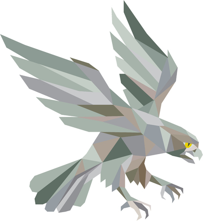 falconidae: Low polygon style illustration in grey of a peregrine falcon hawk eagle bird swooping