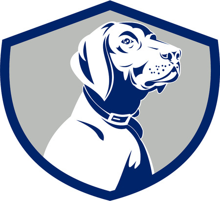 pointer dog: Illustration of a pointer dog head profile looking to the side set inside shield crest on isolated background done in retro style.