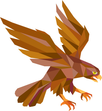 falconidae: Low polygon style illustration of a peregrine falcon hawk eagle bird swooping viewed from the side set on isolated white background done in retro style.