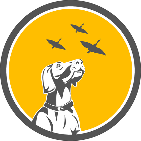 pointer dog: Illustration of an english pointer dog looking up at flying geese set inside circle done in retro style.