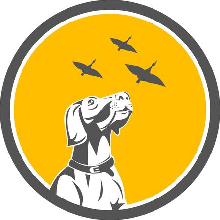 Ilustración de un perro del indicador Inglés mirando hacia gansos fijó el círculo interior hecho en estilo retro volar.