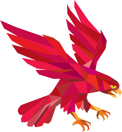 swooping: Low polygon style illustration of a peregrine falcon hawk eagle bird swooping
