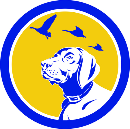 looking at view: Illustration of a head of an english pointer dog looking up at flying geese viewed from the side set inside circle done in retro style. Illustration