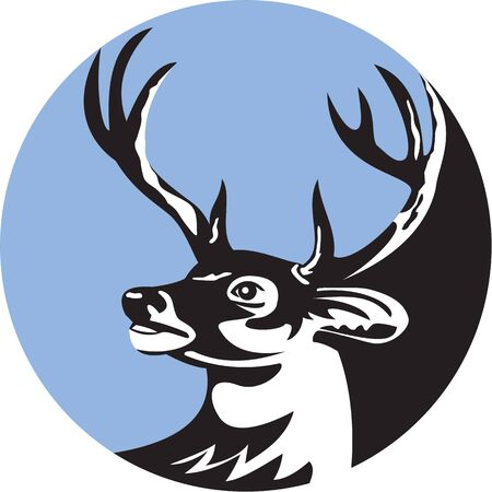 Illustration of a whitetail deer buck stag head looking to the side set inside circle done in retro style.