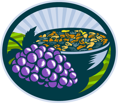 woodblock: Illustration of a bunch of grapes and raisins in a bowl set inside oval shape with sunburst in the background done in retro woodcut style.