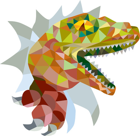 raptor: Low polygon style illustration of a raptor t-rex dinosaur lizard reptile breaking out of wall on isolated background. Illustration