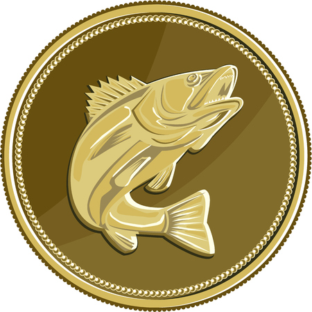 lates: Illustration of a barramundi or Asian sea bass (Lates calcarifer) jumping viewed from the side set inside gold brass coin medallion done in retro style.