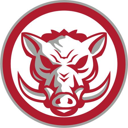 jabali: Ilustración de una cabeza de jabalí jorobado cerdo salvaje enojado visto desde el conjunto frontal dentro del círculo hecho en estilo retro.