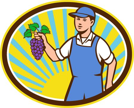 oval shape: Illustration of an organic farmer boy wearing hat holding grapes viewed from the front set inside oval shape with sunburst in the background done in retro style.