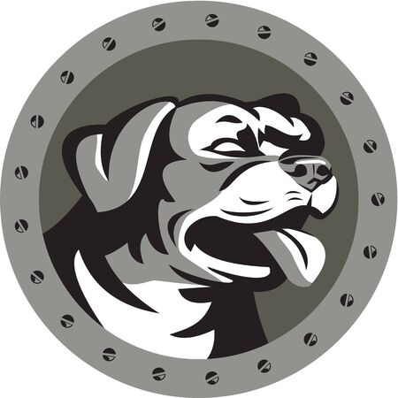 guard dog: Metallic style illustration of a Rottweiler Metzgerhund mastiff-dog guard dog head looking to the side set inside circle with screws done in retro style. Stock Photo