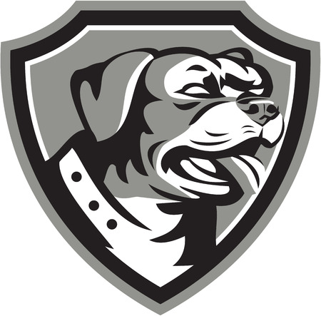 guard dog: Black and white illustration of a Rottweiler Metzgerhund mastiff-dog guard dog head looking to the side set inside crest done in retro style.