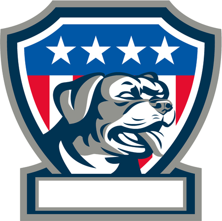 guard dog: Illustration of a Rottweiler Metzgerhund mastiff-dog guard dog head looking to the side set inside shield crest with USA stars and stripes flag in background done in retro style. Stock Photo