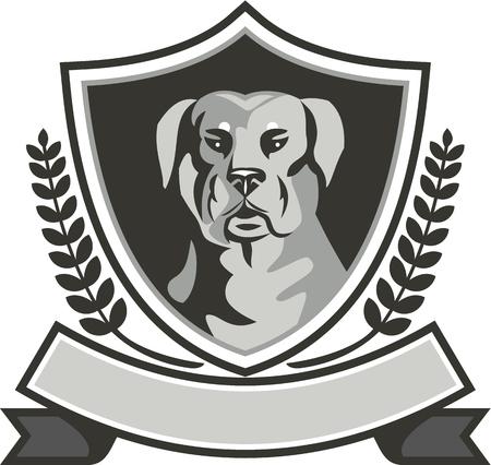 Illustrazione in bianco e nero di una testa di cane da guardia mastino cane Rottweiler Metzgerhund visto dal fronte impostato all'interno scudo cresta con foglie di alloro e nastro fatto in stile retrò. Archivio Fotografico - 56445763