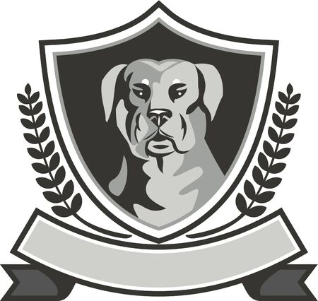 guard dog: Black and white illustration of a Rottweiler Metzgerhund mastiff-dog guard dog head viewed from front set inside shield crest with laurel leaves and ribbon done in retro style.