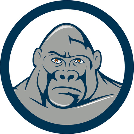 ape: Illustration of an angry gorilla ape head viewed from front set inside circle on isolated background done in cartoon style.