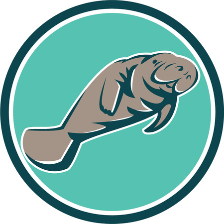 sea cow: Illustration of a manatee sea cow set inside circle on isolated background done in retro style. Illustration