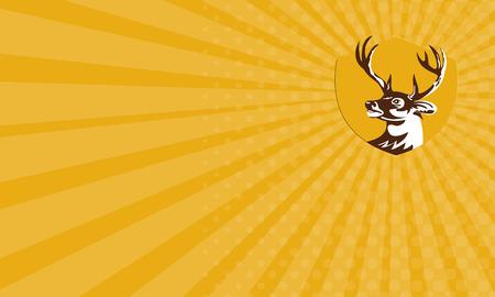 venado cola blanca: Tarjeta de visita que muestra la ilustraci�n de una cabeza de ciervo de cola blanca buck mira a la cara situada en el interior cresta escudo hecho en estilo retro.