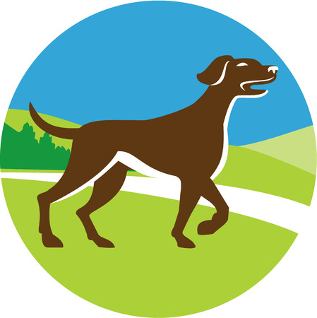 pointer dog: Illustration of an english pointer dog pointing up in a pointer stance with head up tail out and one foot slightly raised viewed from the side set inside circle with grass and trees in the background done in retro style. Illustration