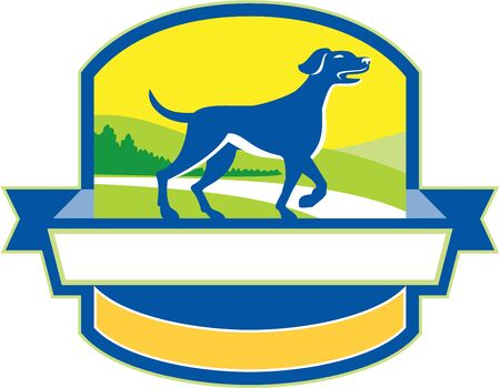 pointer dog: Illustration of an english pointer dog pointing up in a pointer stance with head up tail out and one foot slightly raised with grass and trees in the background viewed from the side set inside shield crest and banner ribbon in the bottom done in retro sty