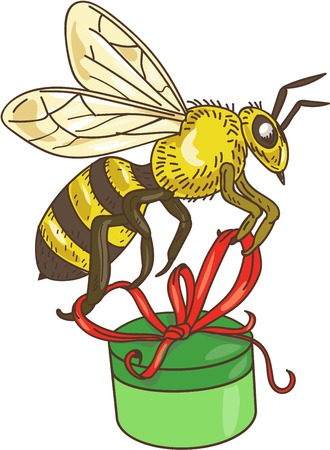 scratch board: Drawing sketch style illustration of a worker honey bee carrying a round gift box present with ribbon viewed from the side set on isolated white background.