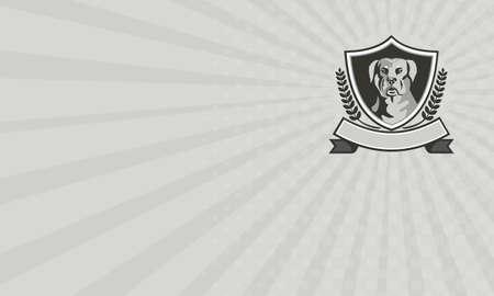 perro policia: Tarjeta de visita que muestra blanco ilustración de una cabeza de perro guardián mastín-perro Rottweiler Metzgerhund visto de frente fijó dentro cresta escudo con hojas de laurel y la cinta se hace en estilo retro Negro y. Foto de archivo