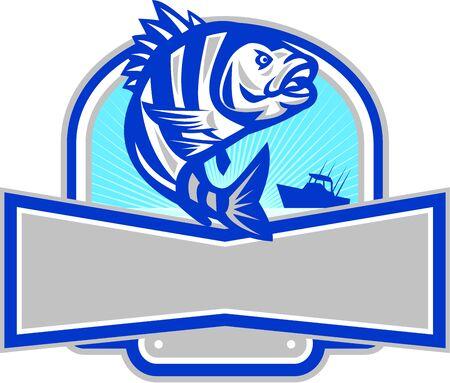 Illustratie van een schaapkop (Archosargus probatocephalus) een mariene vis die in de halve cirkel wordt opgesprongen en banner met vissersboot en zonnestraal op de achtergrond in retro stijl.