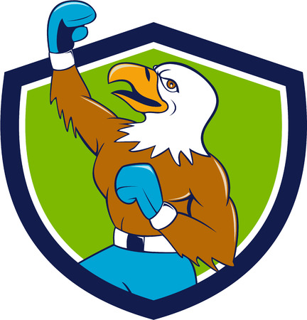 pumping: Illustration of a bald eagle boxer pumping fist in the air looking up viewed from the side set inside shield crest done in cartoon  style.