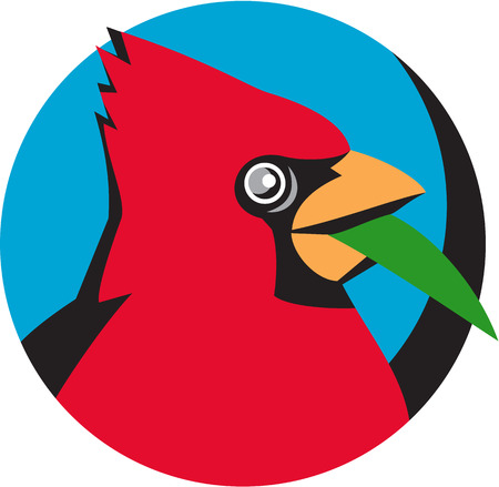 passerine: Illustration of a head of a Cardinal, in the family Cardinalidae, are passerine birds found in North and South America, also known as cardinal-grosbeak and cardinal-bunting with a blade grass viewed from the side set inside circle done in retro style.