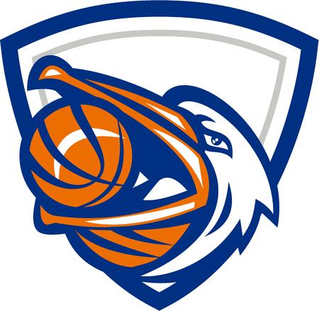 レトロなスタイルで行われるシールド クレスト内設定側を見上げる口でバスケット ボールを持つペリカン鳥の頭のイラスト。  イラスト・ベクター素材