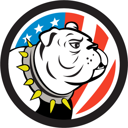 round collar: Illustration of a bulldog head looking to the side set inside circle with usa american stars and stripes flag in the background done in cartoon style. Illustration