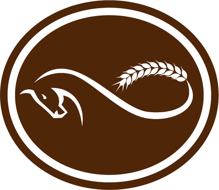 steed: Illustration of a horse with malt wheat tail foring a mobius strip viewed from side set inside oval shape on isolated background done in retro style. Illustration