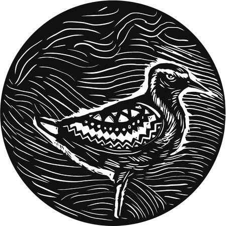 plover: Tribal Art style illustration of a Pacific golden plover, Pluvialis fluva or kolea, a medium-sized plover standing viewed from the side set inside circle.