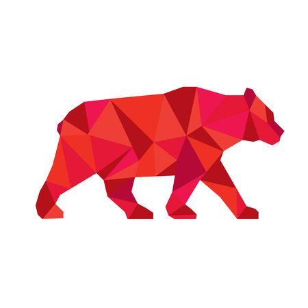 omnivores: Low polygon style Illustration of an American black bear,Ursus americanus, a medium-sized bear native to North America walking viewed from side set on isolated white background.