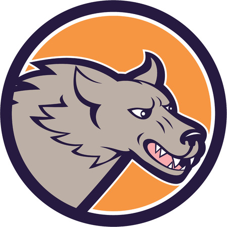 grey wolf: Illustration of a head of an angry grey wolf viewed from the side set inside circle on isolated background done in cartoon style. Illustration