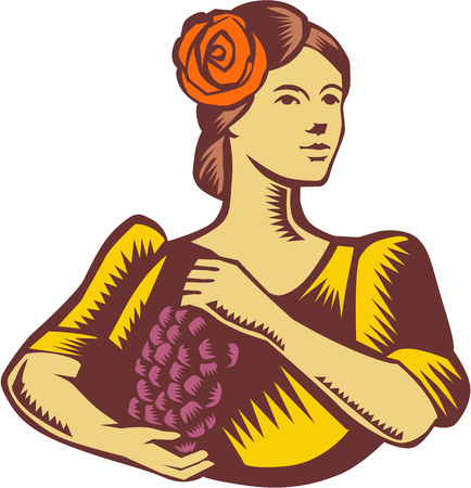 spanish looking: Illustration of a senorita spanish lady looking to the side holding grapes viewed from front set on isolated white background done in retro woodcut style.