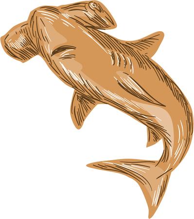 pez martillo: Gráfico de la ilustración del estilo del bosquejo de un tiburón martillo situado en el fondo blanco aislado.