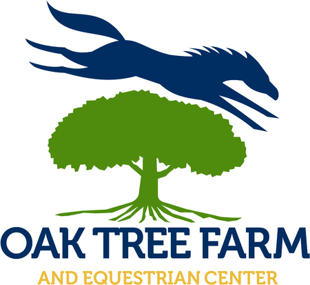 Illustration of a horse jumping over oak tree set on isolated white background with the words text Oak Tree Farm and Equestrian Center done in retro style.