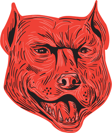 Drawing sketch style illustration of an angry pitbull dog mongrel head facing front set on isolated white background. Illustration