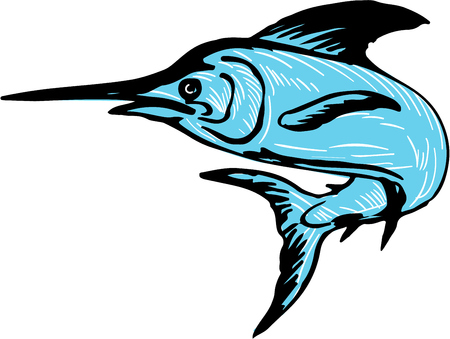 billfish: Drawing sketch style illustration of a blue marlin fish jumping viewed from side set on isolated white background. Illustration