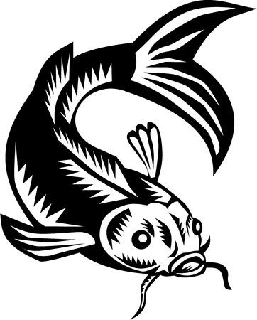 鯉錦鯉鯉のイラストは、前部セット レトロな木版画のスタイルで行われる分離の白い背景の上から見た。