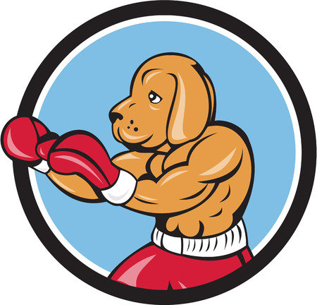 kampfhund: Illustration of a dog boxer in a fighting stance viewed from the side set inside circle on isolated background done in cartoon style. Illustration