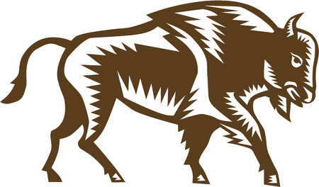 printmaking: Illustration of an american bison buffalo bull viewed from the side set on isolated white background done in retro woodcut style.