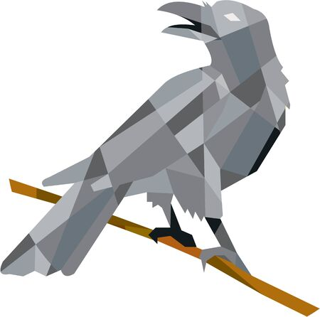 corvus: Low polygon style illustration of a crow bird perched on a piece of wood looking back set on isolated white background. Illustration