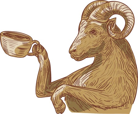 Drawing sketch style illustration of a ram goat drinking coffee viewed from the side set on isolated white background.