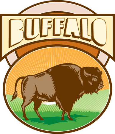 printmaking: Illustration of an american bison buffalo bull viewed from the side set inside oval shape with sunburst and field in the background and the word Buffalo set inside rectangle shape done in retro woodcut style. Illustration