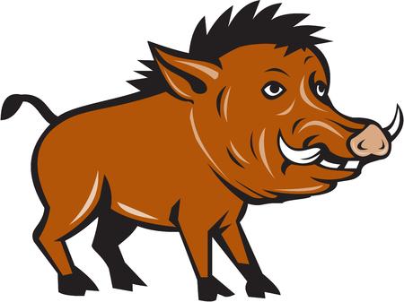 jabali: Ilustración de un razorback jabalí cerdo salvaje se ve desde el lado de conjunto sobre fondo blanco aislado hecho en estilo de dibujos animados.