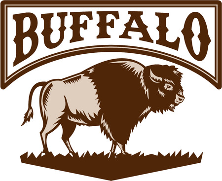printmaking: Illustration of an American bison or buffalo viewed from the side set on isolated white background with the word text Buffalo done in retro woodcut style. Illustration
